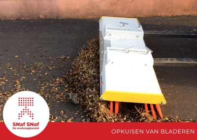 snaf-snaf-industriele-snelveegborstel-opkuisen-van-bladeren